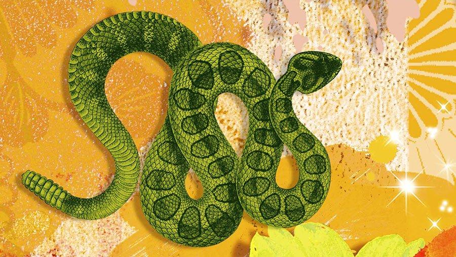 Знаки зодиака с змеями картинки