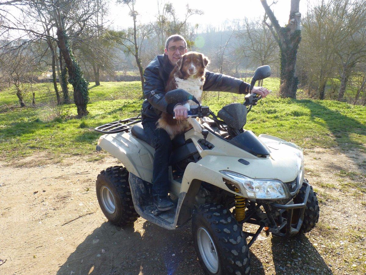 Petit tour dans les #vignes en bonne compagnie ! #hiver #soleil #vigne #vin #taille #goodtime #dog<br>http://pic.twitter.com/o4H46P4Hgb