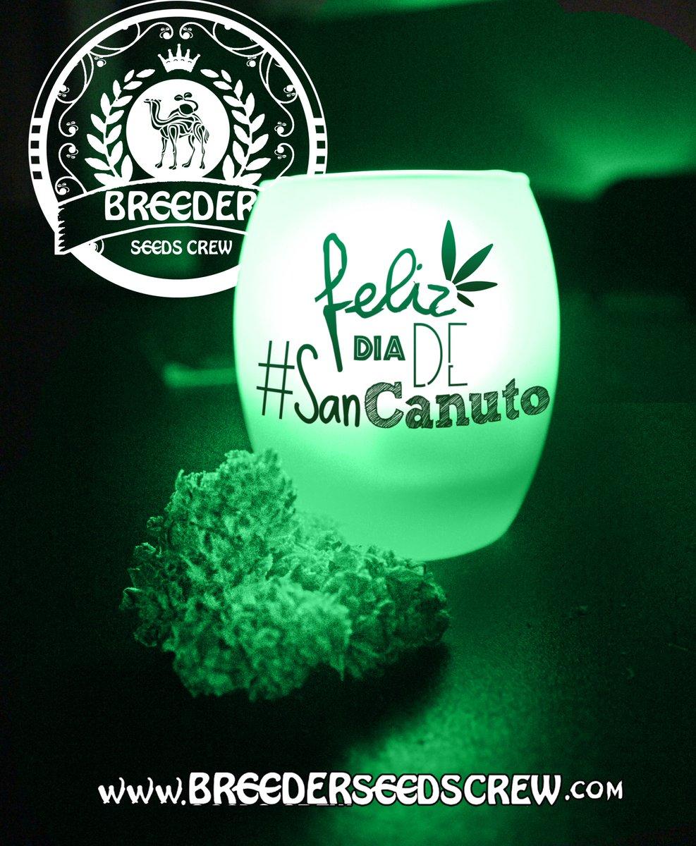 Te deseamos un #feliz día de #SANCANUTO2017, hoy #rezaleasancanuto<br>http://pic.twitter.com/fcEf9qSmvz