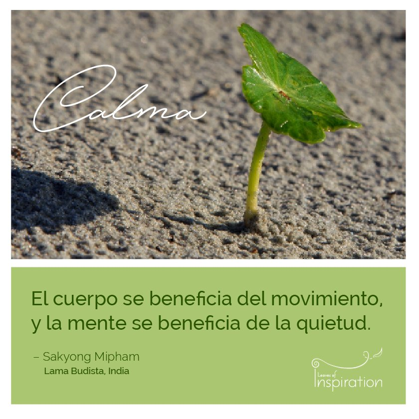 Inspiraciones para la #calma <br>http://pic.twitter.com/eYJ7NEHzYD
