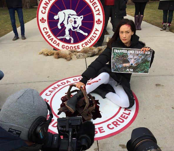Watch: @MaggieQ & @peta team up to protest wearing fur https://t.c...