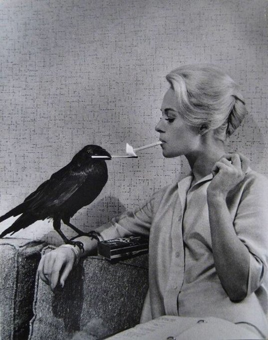 Happy birthday to the breathtaking Tippi Hedren! The promo shots for The Birds are all incredible.