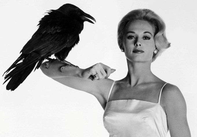 Wouldja\ve ever thought Tippi Hedren would go from running from birds to championing animals? Happy Birthday!