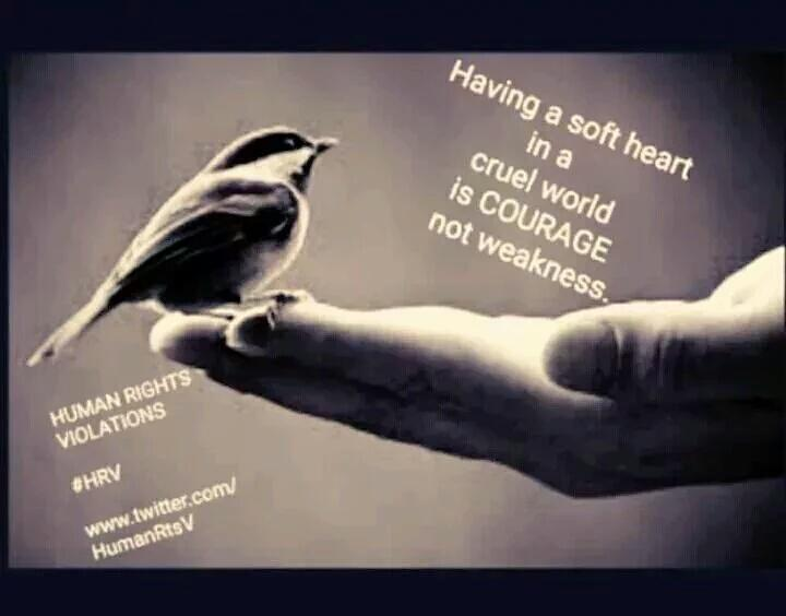 """Having A Soft Heart In This Cruel World Is Courage Not: Human Rights #HRV On Twitter: """"Having A Soft Heart In A"""