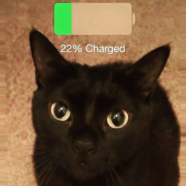 My battery is dying #goodnight https://t.co/EdmXa51MBy
