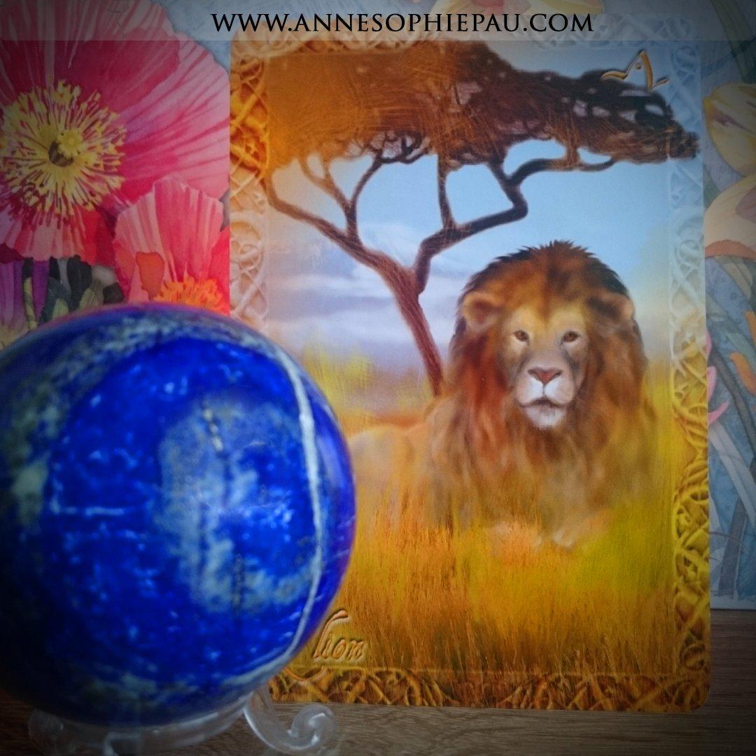 Retrouvez le message du Lion sur #FB  http:// amzn.to/2gzOZmT  &nbsp;   #cartesoracle #medium @arnaud_riou  #chamanisme #peupleanimal @Tredaniel<br>http://pic.twitter.com/9FWJrUXh3z