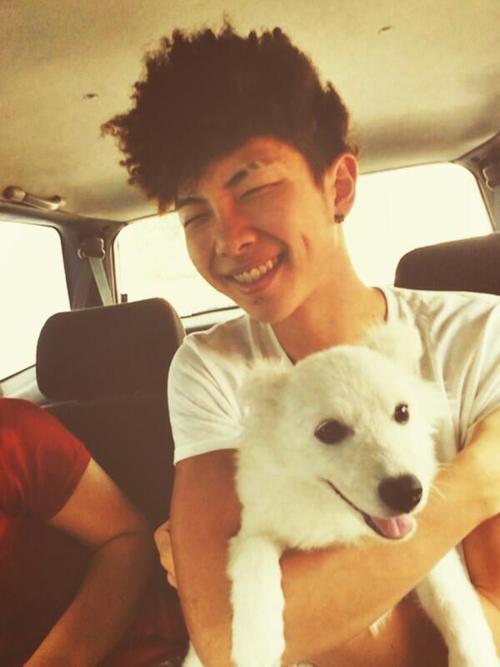 """ㅤ on Twitter: """"Starting with Rapmon,Namjoon's dog,who is an American Eskimo  Dog.… """""""