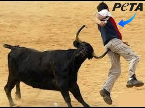 After centre cleared Ordinance for #Jalikattu !!