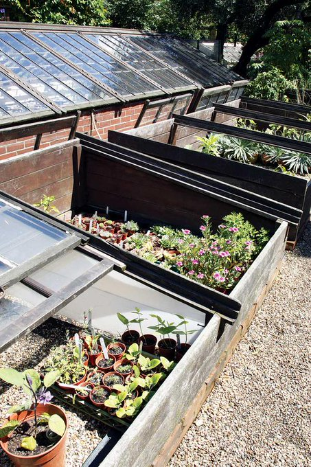 Make a Cold Frame for Herbs