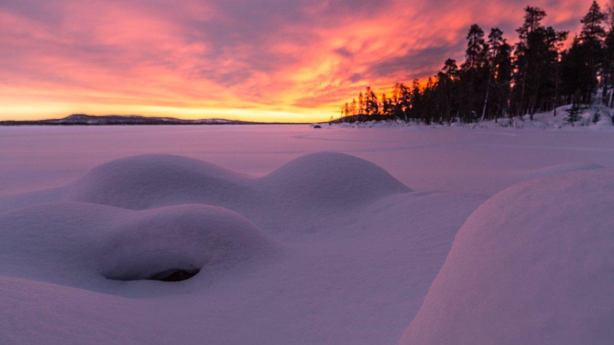 MT @MrAntiatlas Glorious Arctic sunrise, setting the sky on fire over Ukonjärvi #Ivalo. #Travel #visitlapland #Suomi <br>http://pic.twitter.com/xsMxBENw3r
