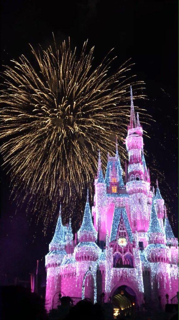 Magic Kingdom Fireworks! Picture; @rociozanazzi https://t.co/FwsCFr5uD...
