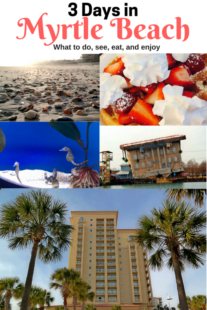 3 Days In Myrtle Beach: What To See, Do, Eat, & Enjoy #ad https://t.co/SF0hwVVPwf https://t.co/kwXC6w9Dei