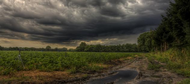 #Clima | Cuatro #AlertaMeteorológicos a muy corto plazo afectan a numerosos departamentos pampeanos