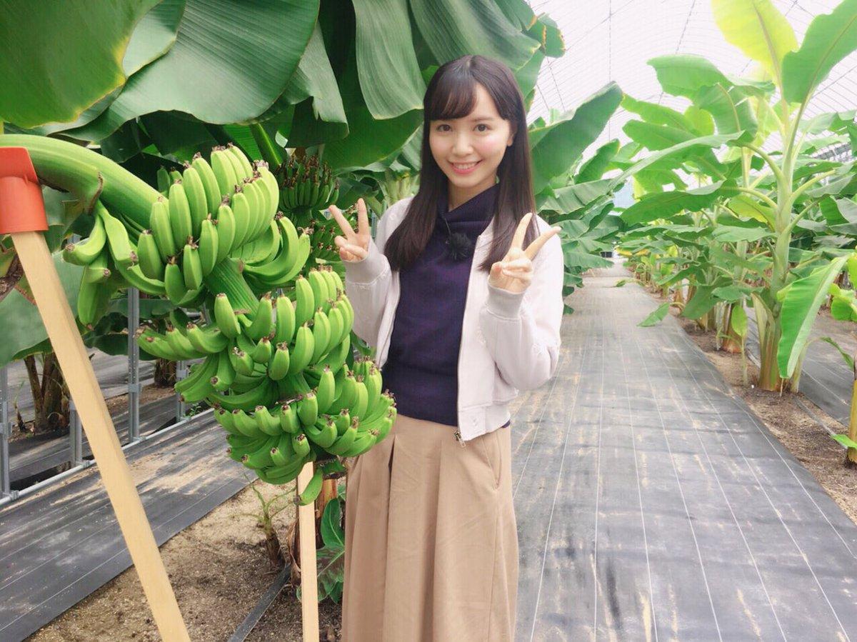 バナナの木と山根千佳