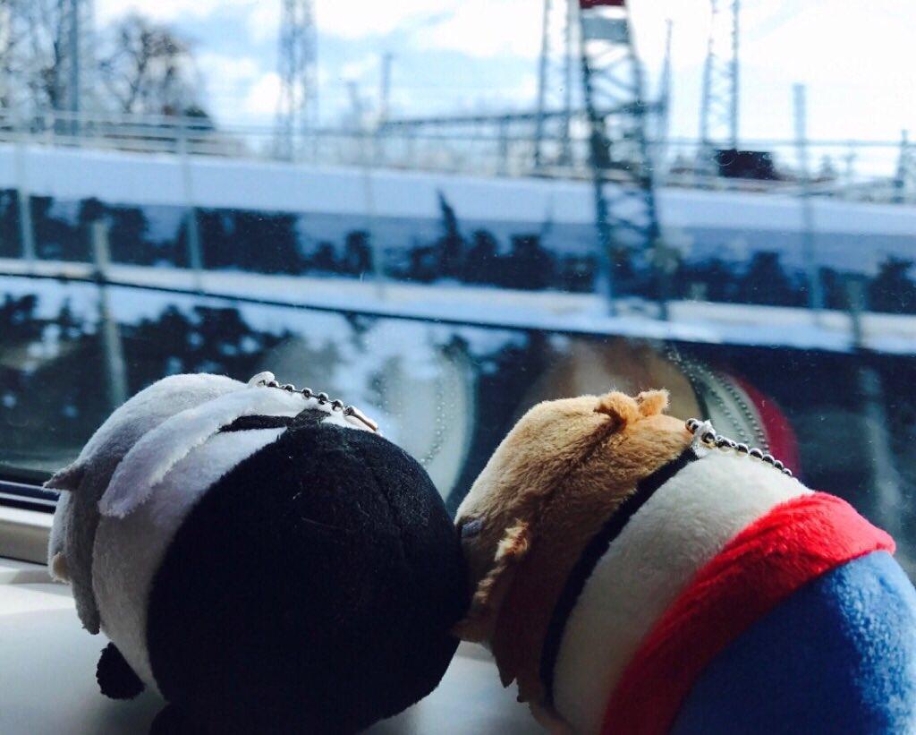 青森へと向かっておりますが、今日は探偵社みんなのもちもちマスコットも一緒です。そして窓からは雪が見え…