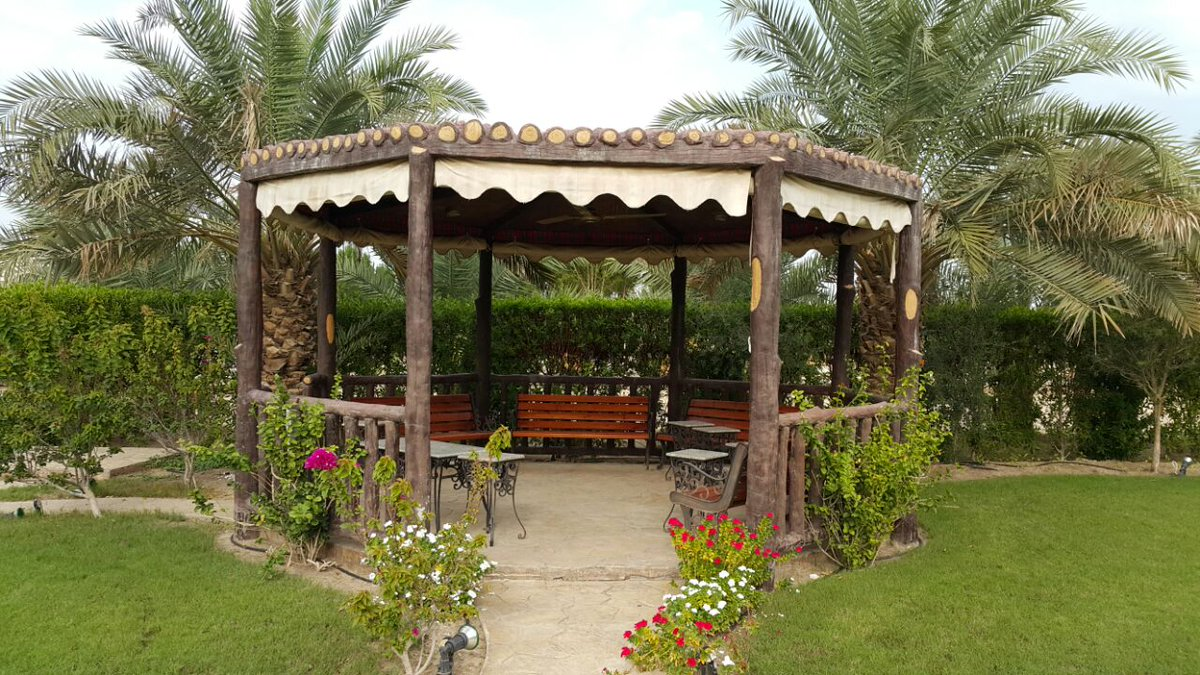 green oasis on twitter kuwait garden design