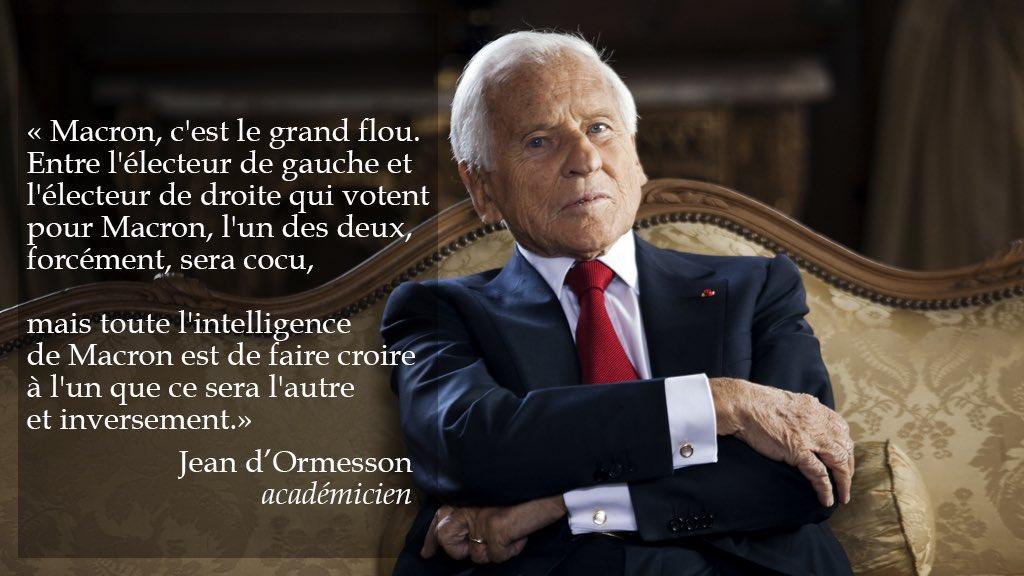 Emmanuel Macron vu par Jean d'Ormesson. Criant de vérité !
