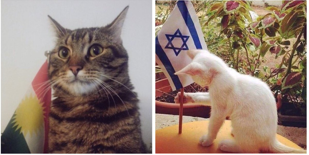 Hêndo and Mordechai are on a mission ... #Kurdistan #Israel<br>http://pic.twitter.com/21qpNGnXWN