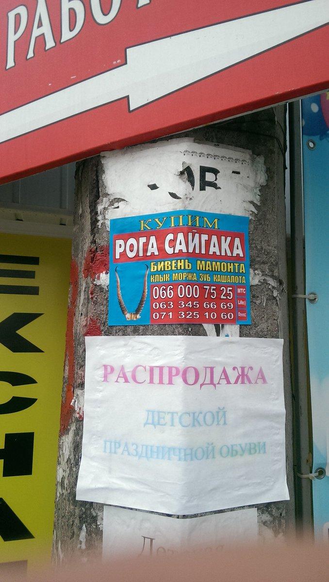 """Гражданин Украины пытался вывезти в Россию 10 кг """"травки"""" в бензобаке - Цензор.НЕТ 6262"""