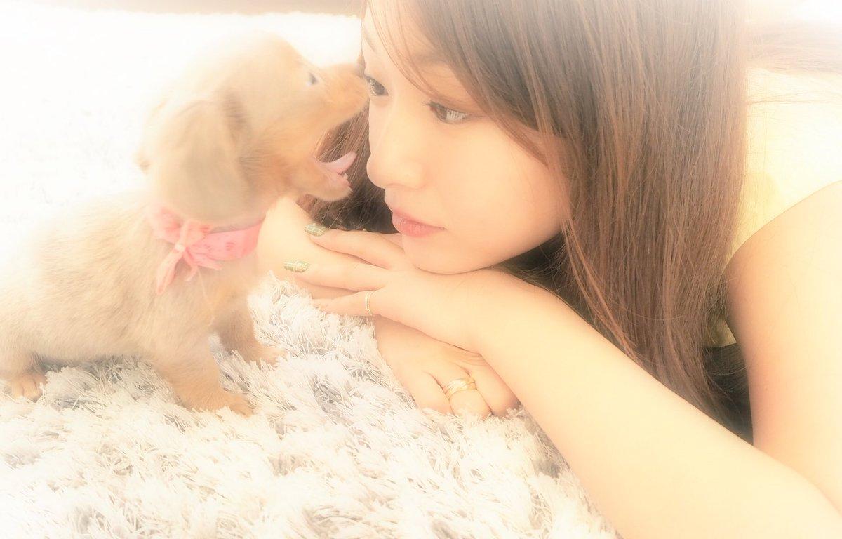 懐かしい写真見て癒されてた まだおチビなティアちゃん  ♡♡♡