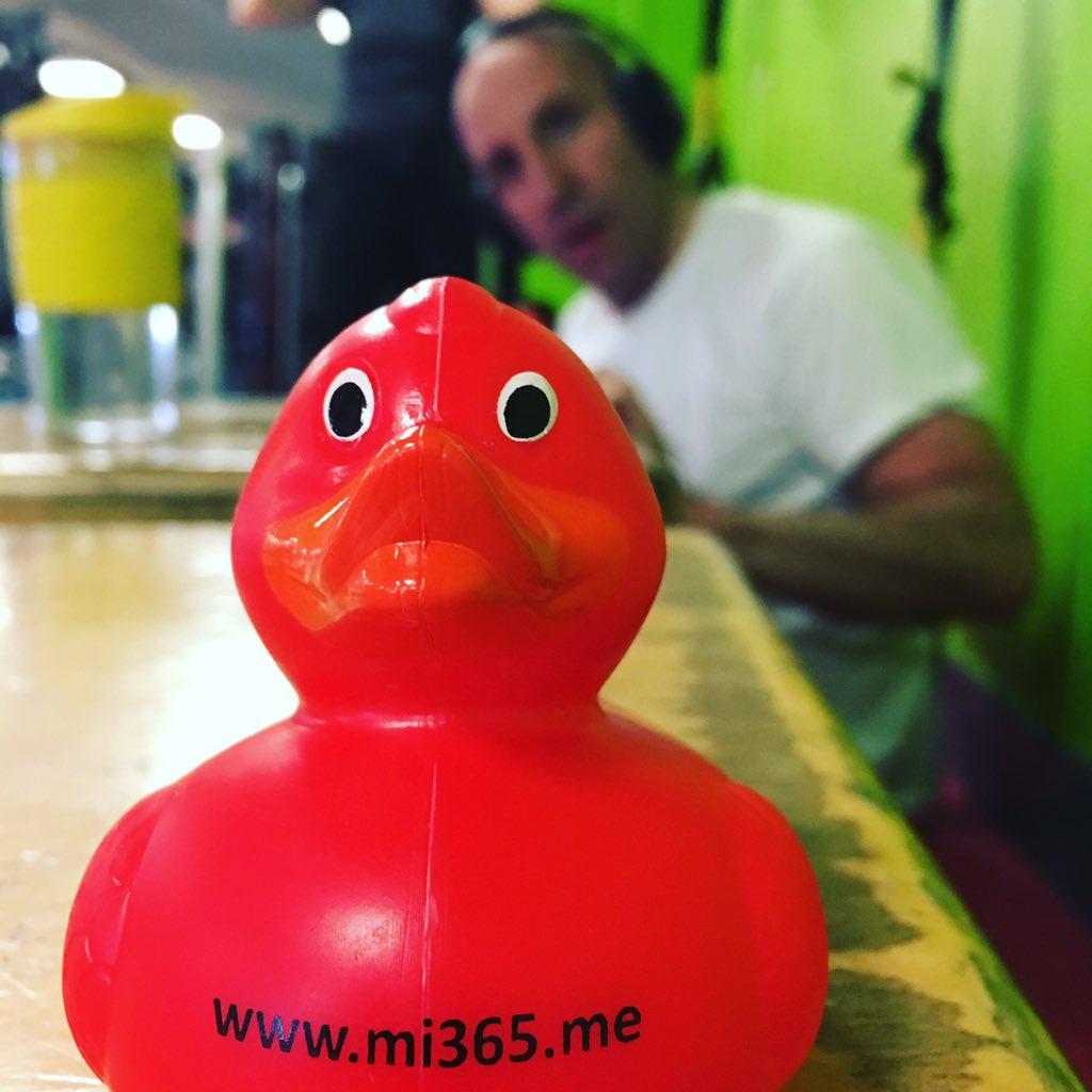 Resultado de imagem para mi365 duck