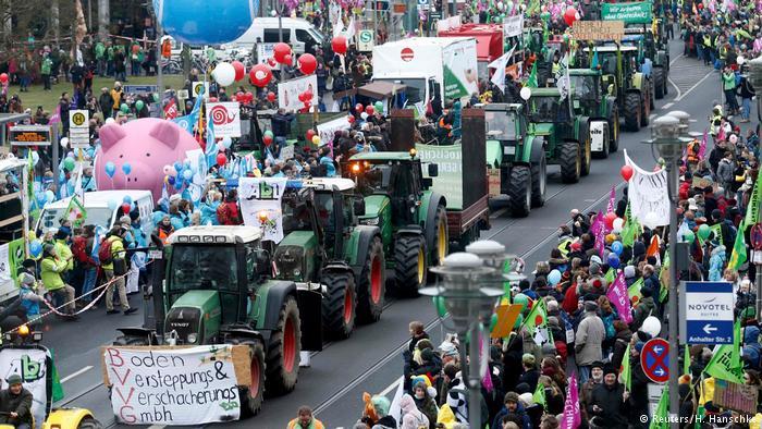 В Берлине протестующие требовали изменения в аграрной политике