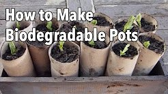 How to Make Biodegradable Plant Pots