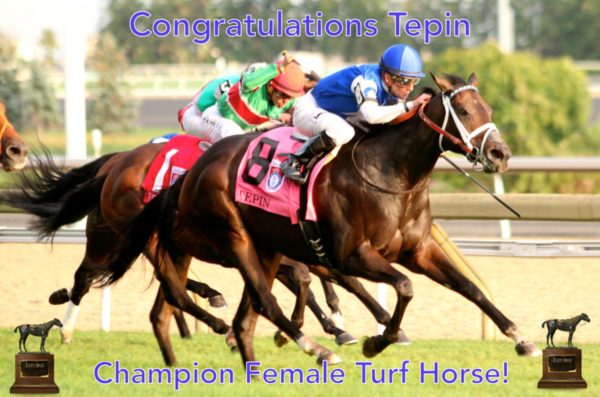 Congratulations Tepin, the 2016 #EclipseAwards winner for Champion Fem...