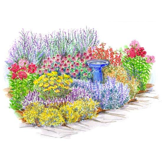 Betterhomes Gardens On Twitter Tough As Nails Perennial Garden