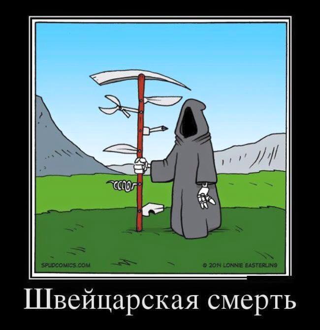 Картинки с юмором про смерть, смешной воробей