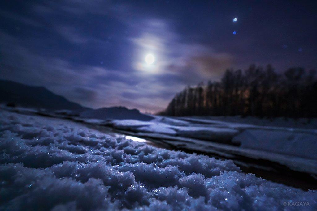 月光を浴びるフロストフラワー。凍った湖のほとりに月が昇ると、花の形をした霜がキラキラと一斉に輝き始めました。(今朝未明、北海道上士幌町にて撮影) pic.twitter.com/BpLrPCuFiB