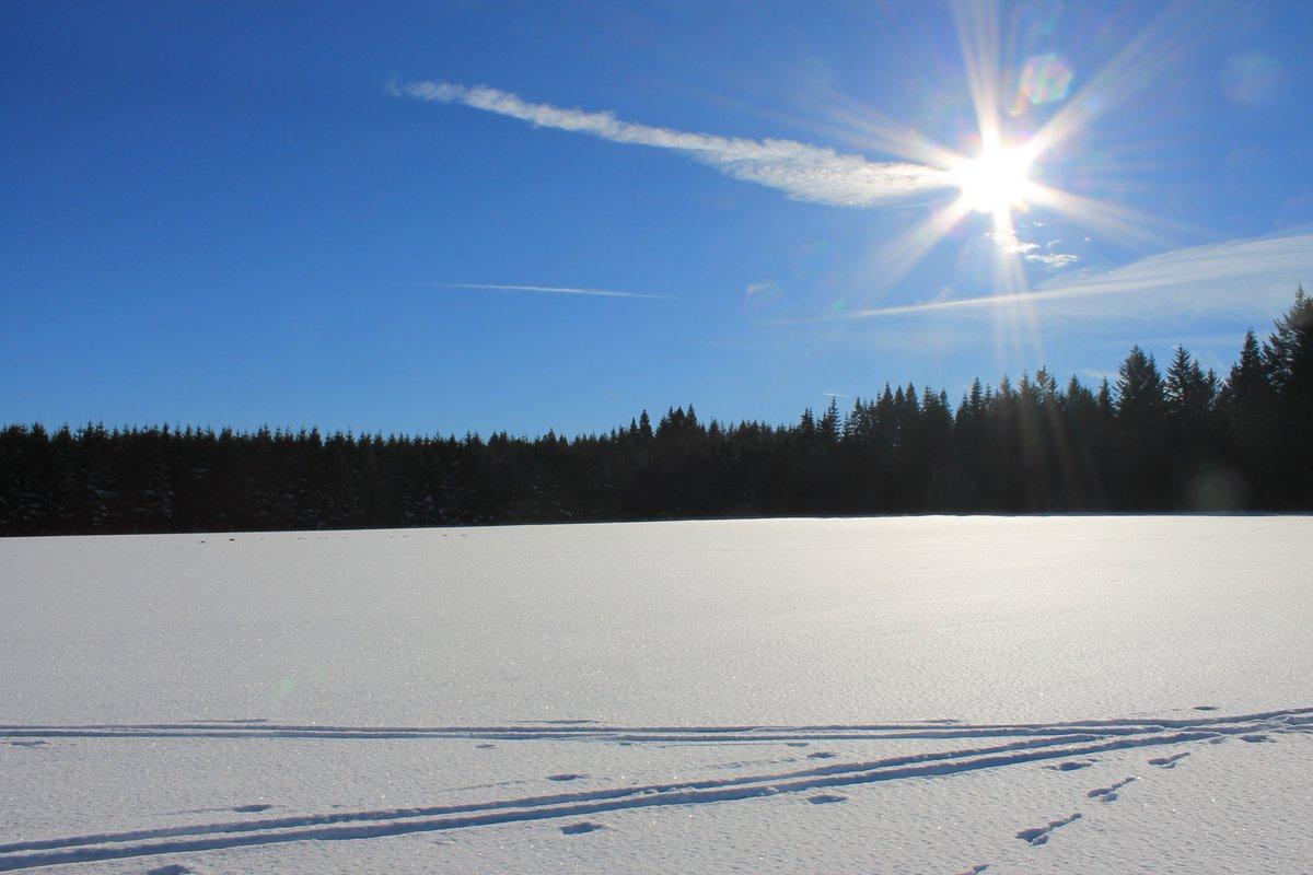 Les joies du ski en #Wallonie Pas besoin d&#39;aller très loin pour apprécier la neige  direction #Bastogne  #ardenne #belgique<br>http://pic.twitter.com/oORMsYSob4