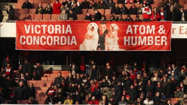 ¿Por qué los perros de Alexis son la guía del triunfo del Arsenal? htt...