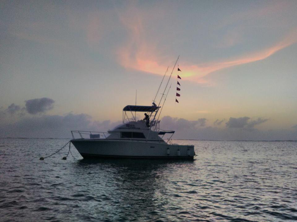 Diani, Kenya - Shuwari went 1-2 on Blue Marlin and 2-2 on Sailfish.