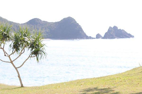 北山クンは、奄美大島での撮影をこう振り返る  キスマイ北山宏光 撮影で訪れた奄美でウミガメに感動! …