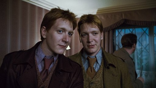本日は2(ふた)5(ご)で「双子の日」ということで、双子ペアの共通点を調べてみました。  ◆フレッド…
