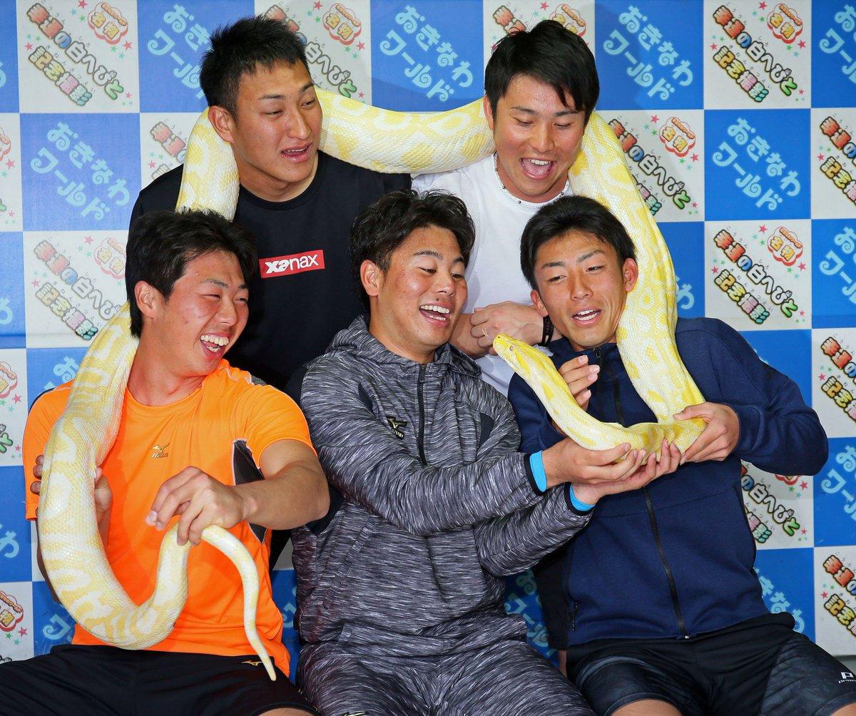 DeNAルーキーズはビルマニシキヘビも体験/5日キャンプ写真特集 nikkansports.com/…