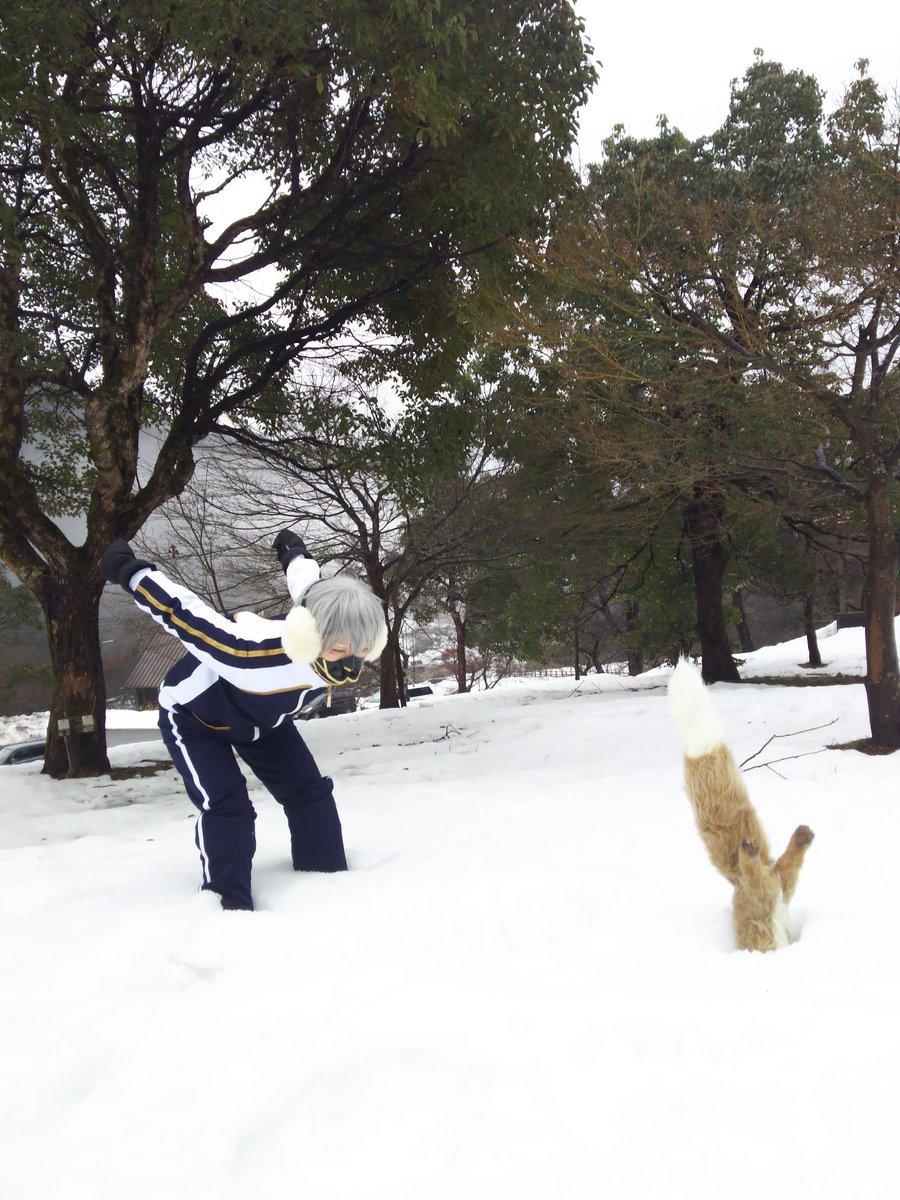 雪が積もってたらやりたくなる狐ヽ(•̀ω•́ )ゝ✧ 今回一番の出来!! #ラコロール