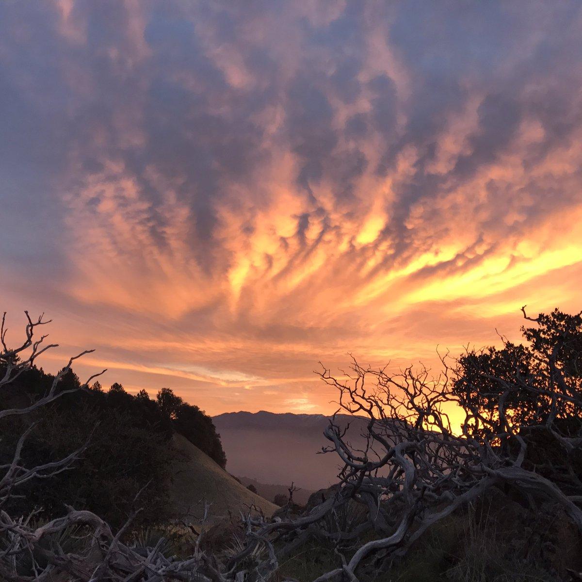 Sunday morning sunrise #hike. https://t.co/FEYuLp8Zue