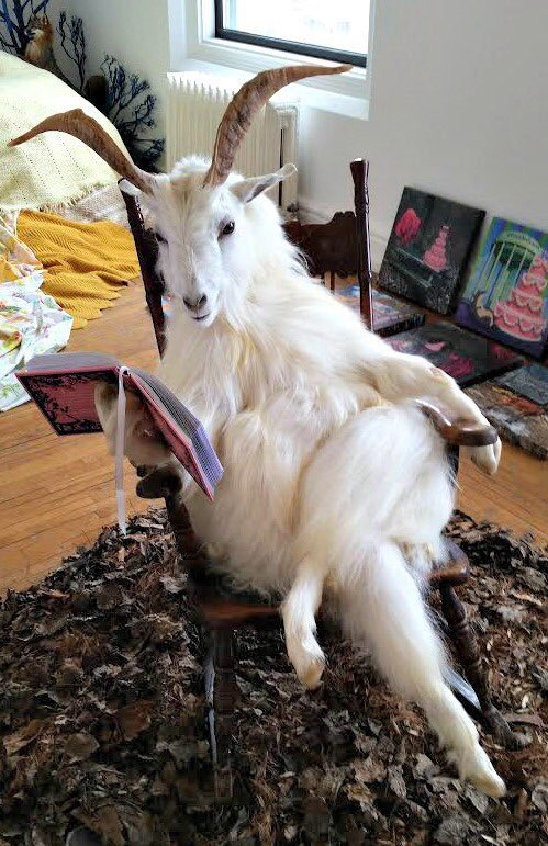 Tom Brady reading a bedtime story to his kids tonight https://t.co/GXhwBMWw94