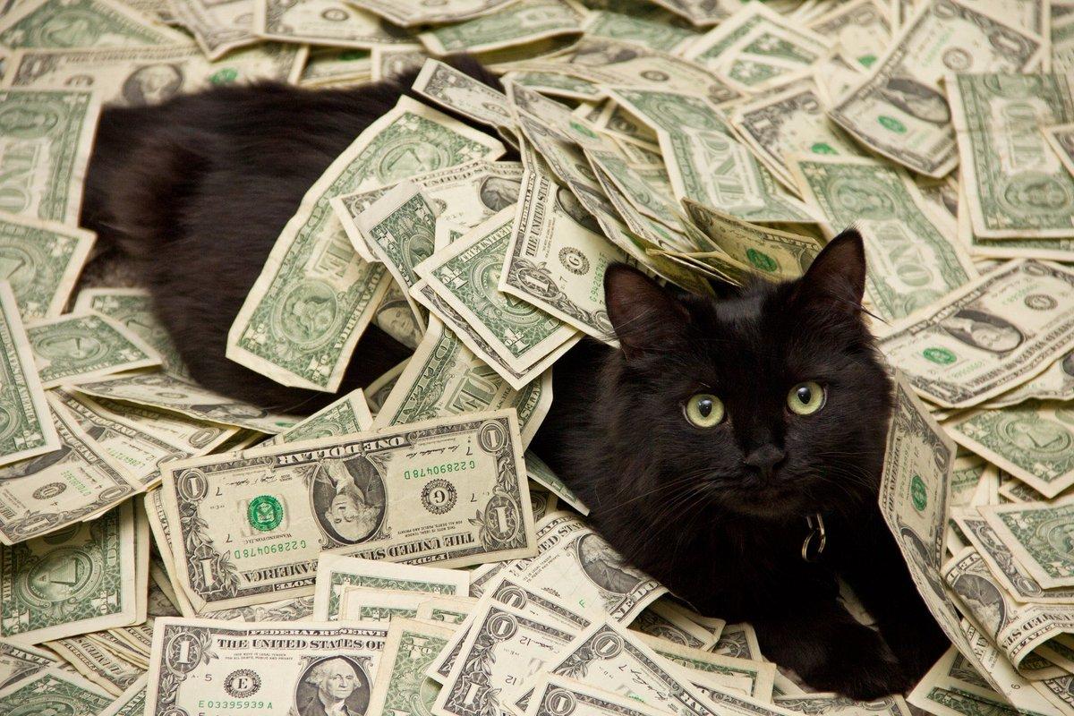 Картинки с деньгами веселые
