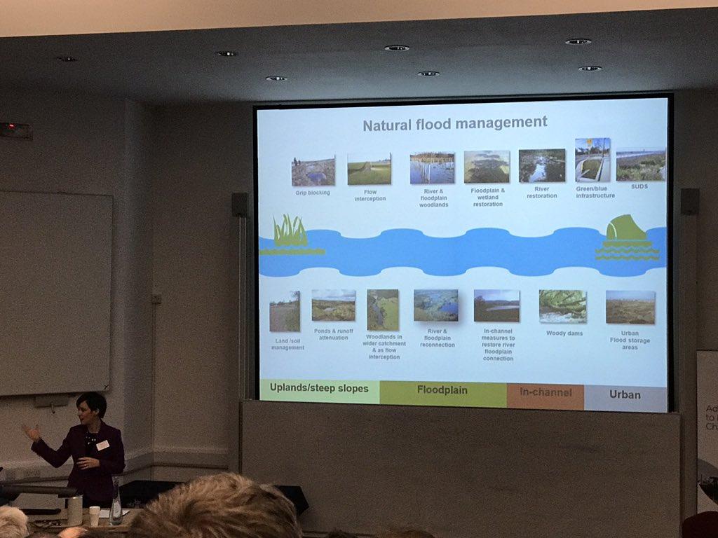 What is natural flood management? @ClareDinnisEA #glosnfm17 https://t.co/pbDzgKzq3N