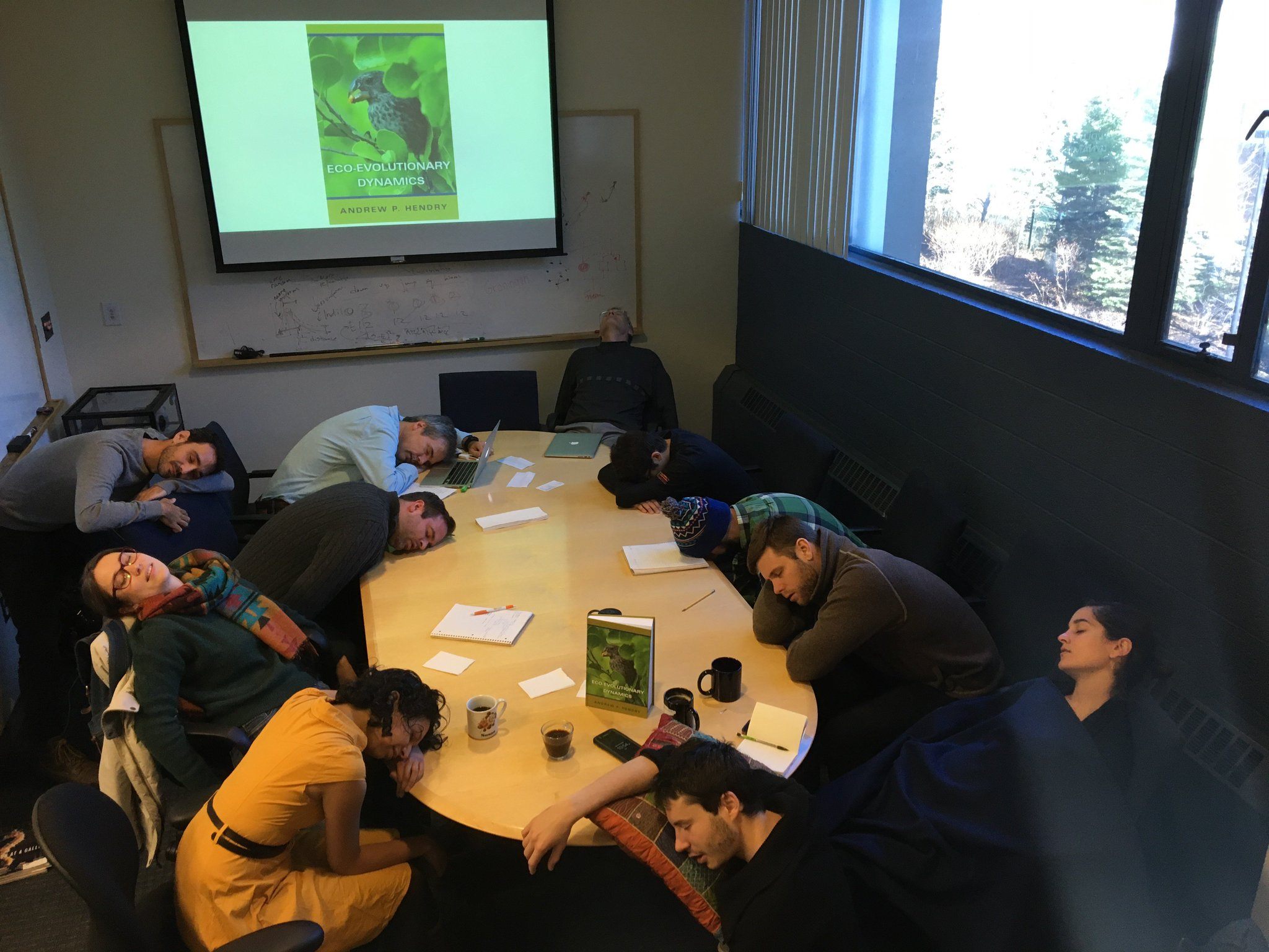 The @JLosos lab read @EcoEvoEvoEco's book today. Seemed great 'til the snoozes hit us! #PeopleWhoFellAsleepReadingMyBook  #NeedsMore #Anoles https://t.co/0NgDSxajg9