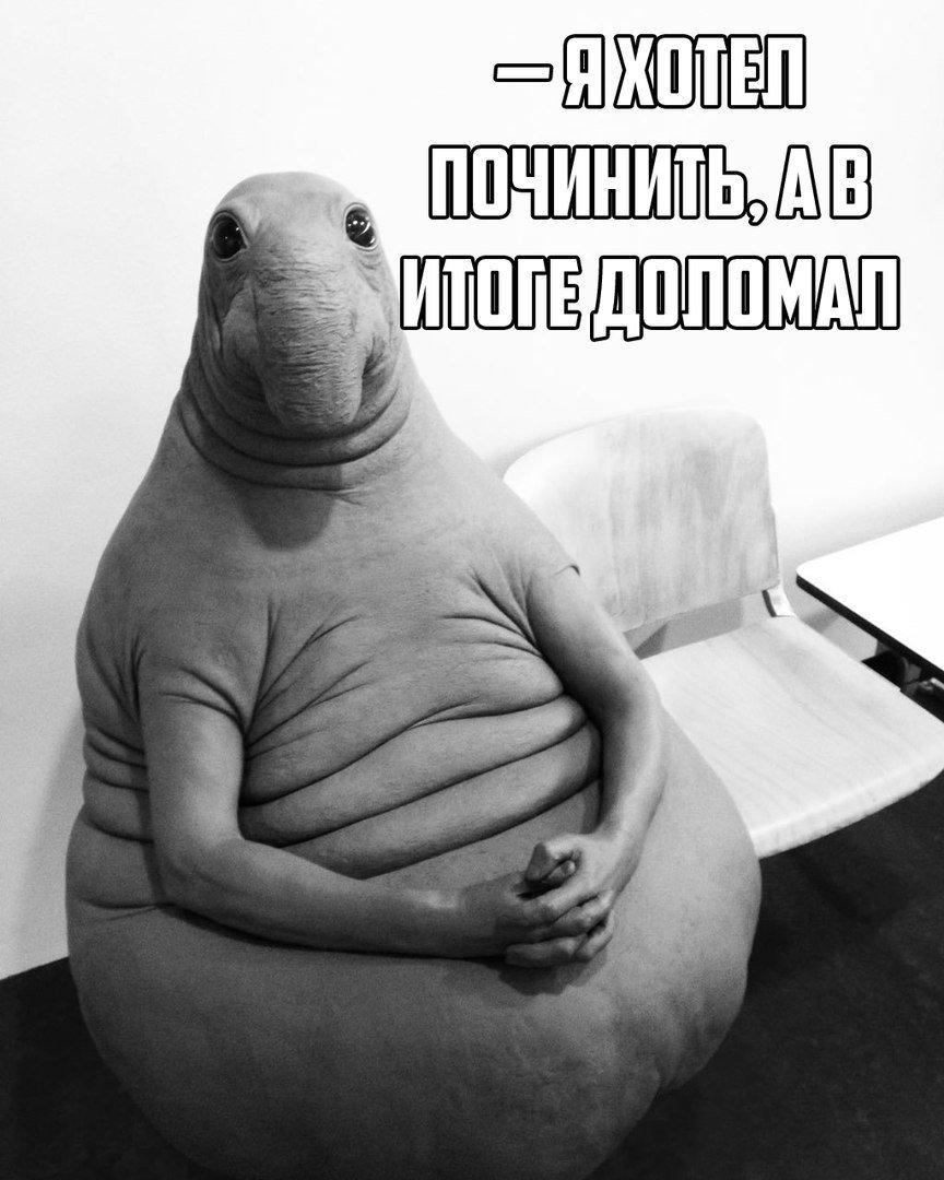 oy-devki-ya