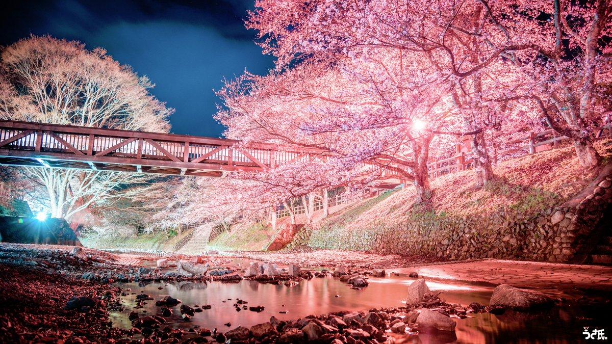 『幻想京夜景~春夏秋冬~』京都、おこしやす。 pic.twitter.com/ivoiS4xAPT