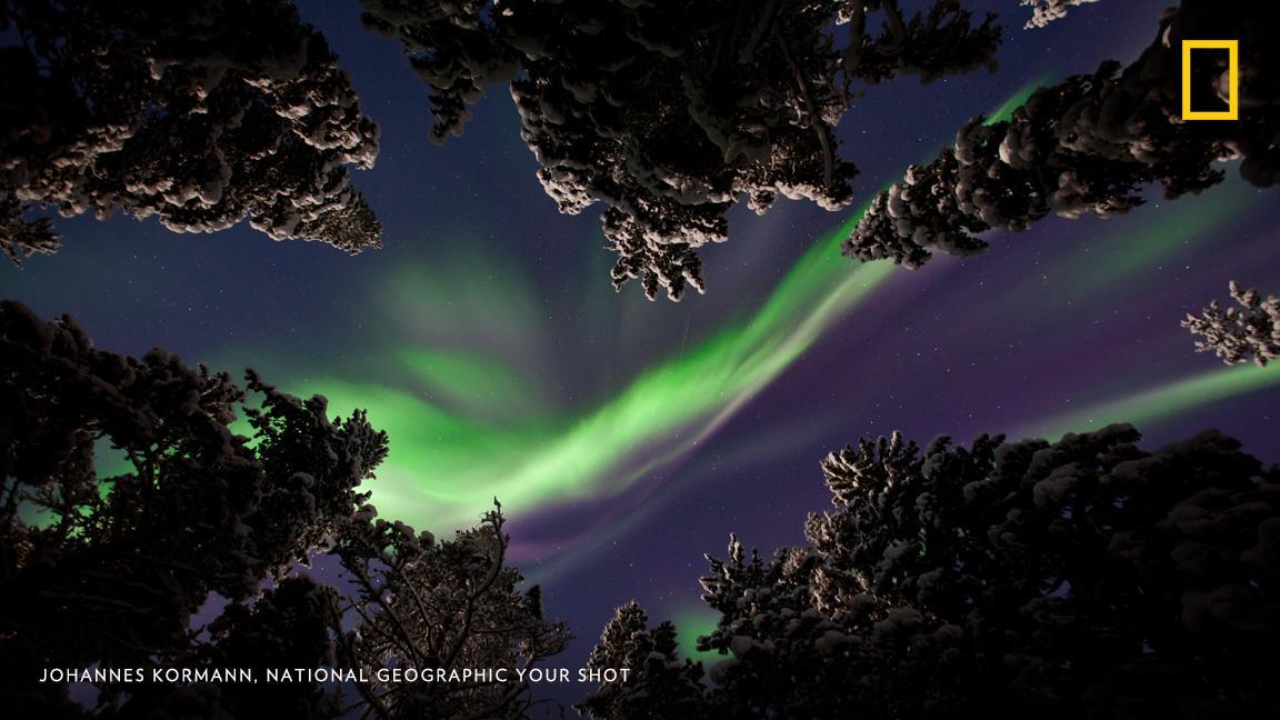 Bella #fotografía de la #auroraboreal en #Lapland, #Finlandia 📷: #JohannesKormann @NatGeoPhotos https://t.co/n8fZodVdb1 #SMCUOC #invierno https://t.co/bK927jb7dp