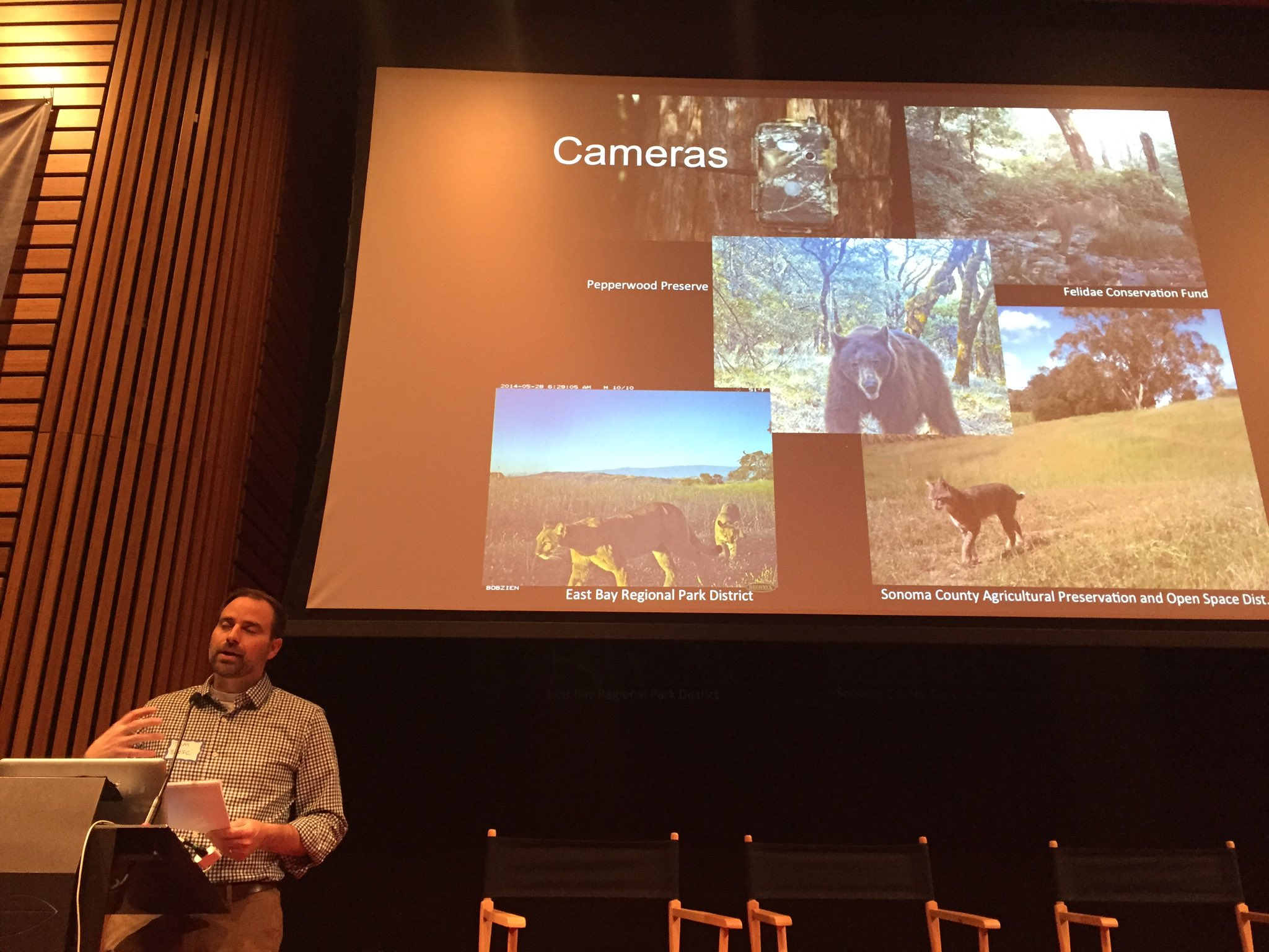 313+ wildlife camera traps in the #BAYAREA to understand where animals roam. Tom Robinson setting the context for #oscwildlife https://t.co/bkLcg4sPrl