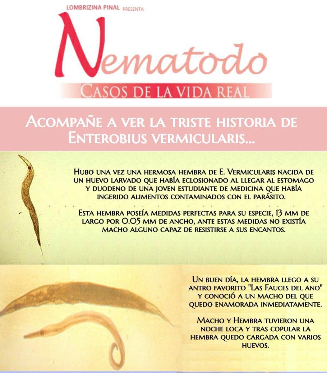 enterobius vermicularis historia