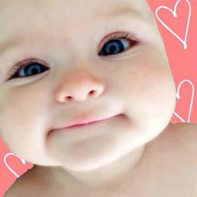 赤ちゃんbod Baby Baby Bod Twitter