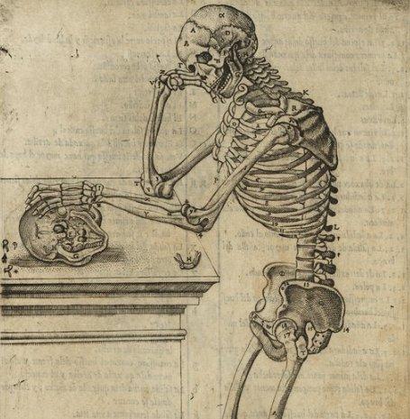 介绍西班牙医学解剖学家胡安·巴尔韦德的《人体构造介绍》,约 1556 年出版:https://t.co/p72xu435bG https://t.co/5qpjCm13Hy